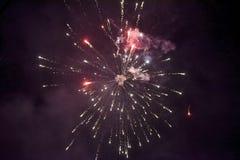 在午夜天空的烟花 免版税库存图片