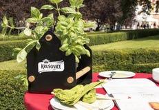 在午餐以后 蓬蒿植物、板材和餐巾 库存照片