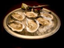 在半壳的牡蛎 免版税图库摄影