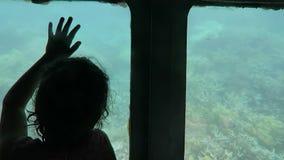在半潜水艇的儿童旅行在大堡礁的珊瑚海在昆士兰澳大利亚, 股票录像