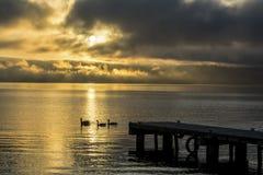 在华盛顿湖的有雾的日出华盛顿州 免版税库存照片