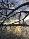 在华盛顿特区的冬天日落 免版税库存图片