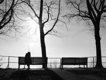 在单独雾的消沉在公园长椅 免版税库存照片