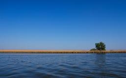 在单粒宝石结构树附近的湖 库存照片