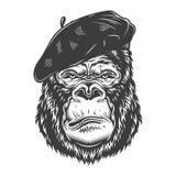 在单色样式的严肃的大猩猩 免版税库存图片