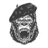 在单色样式的恼怒的大猩猩 库存图片