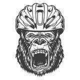 在单色样式的恼怒的大猩猩 免版税库存图片