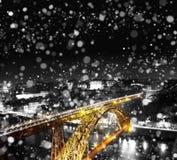 在单色背景的金黄桥梁在冬天 免版税库存照片