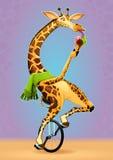 在单轮脚踏车的滑稽的长颈鹿 皇族释放例证