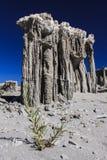 在单音湖的沙子凝灰岩 库存图片
