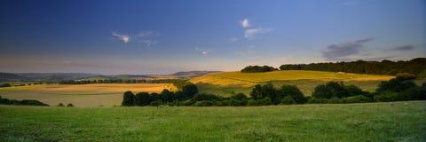 在南下来的夏天日落-落在Butser小山的金黄小时光高分辨率被缝的全景从东部上 免版税图库摄影