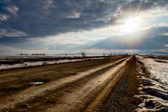 在南乌拉尔干草原的春天  库存照片