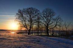 在南乌拉尔干草原的春天  免版税库存照片