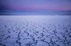 在南冰洋的薄煎饼冰 免版税库存图片