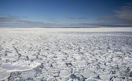在南冰洋的薄煎饼冰 库存图片