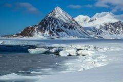 在南卑尔根群岛的北极春天 免版税库存照片