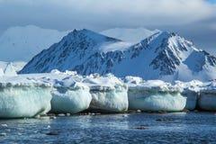 在南卑尔根群岛的北极春天 图库摄影