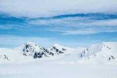 在南卑尔根群岛的北极春天 库存图片