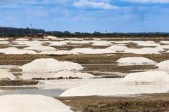在南印度的海岸附近盐溶赢取某处 免版税库存照片