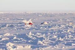 在南极洲冰在一座冰川的阵营 库存图片
