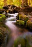在南河, Shenandoah国家公园,弗吉尼亚的小瀑布 免版税库存照片