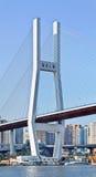 在南浦河,上海,中国的桥梁 库存图片