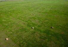 在南达科他农业的干草捆领域航拍  免版税库存图片