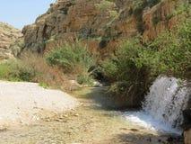 在南部的一条小河 免版税图库摄影