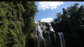 在南部的Tat Yeung瀑布老挝人人` s民主共和国 免版税库存照片