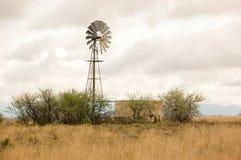 在南部非洲的干旱台地高原的风车 免版税库存图片