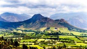 在南非的西开普省省的Franschhoek谷有是海角Winelands的一部分的葡萄园的 图库摄影