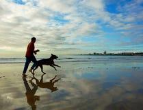 在南非跑的早晨海滩 免版税库存图片