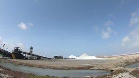 在博内尔岛的盐采矿 股票视频