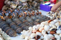 在博拉凯海岛上的海鲜市场 免版税库存图片