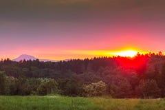 在博登湖附近的充满活力的日落在德国 免版税库存图片