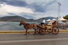在卡尔基斯古城的街道上的一个棕色用马拉的支架在希腊 免版税图库摄影