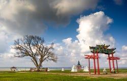 在卡尔梅克共和国的神圣的树 在春天天空背景的一棵孤立白杨树与白色云彩的 干草原 库存图片