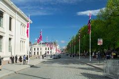 在卡尔Johans门的挪威宪法天 免版税库存照片