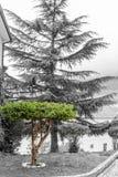 在卡斯泰尔迪桑格罗之间街道的摄影文献  在Castel之间di圣街道的摄影文献  免版税库存图片