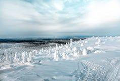 在卡累利阿的北部的壮观的冬天风景我 免版税库存照片