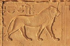 在卡纳克神庙寺庙复合体,勒克斯墙壁上的古老象形文字  免版税库存照片