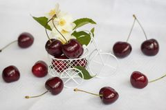 在卡车微型自行车,与beryy的轻的背景,花,叶子的甜成熟樱桃 健康食物,戒毒所的概念 免版税库存照片