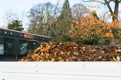 在卡车的下落的叶子 免版税库存照片