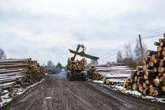 在卡车, 2017年11月18日,村庄Bushmanova, I的装货木材 库存照片