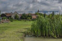 在卢科夫村庄筑成池塘在夏天晴朗的早晨 免版税库存照片