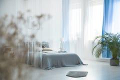 在卧室内部的灰色毛皮 图库摄影