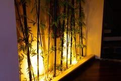 在卧室有光掩藏在美丽的竹子下 免版税库存图片
