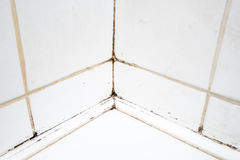 在卫生间阵雨的肮脏的瓦片 免版税库存照片