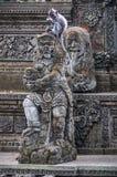 在印度寺庙的短尾猿在猴子森林, Ubud,巴厘岛里 免版税库存照片