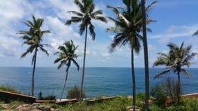 在印度的南部的海岸的异乎寻常的海滩 免版税图库摄影